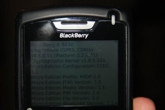 blackberry45.JPG